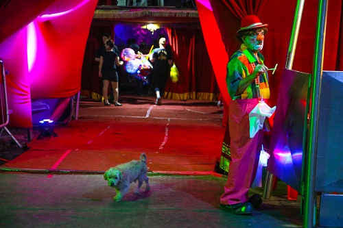 PP2_uma-vida-dedicada-ao-circo_033