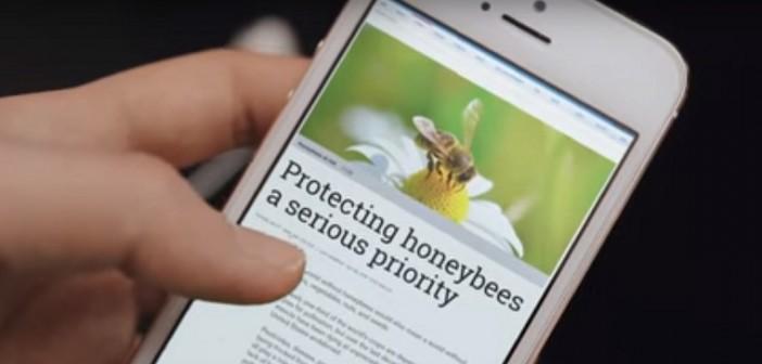 abelhas.generalmills