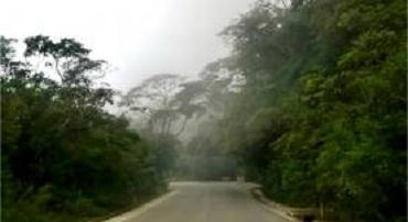 estrada.paratycunha