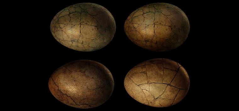 egg-1108880_1280